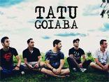 Tatu Goiaba