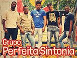 Grupo Perfeita Sintonia
