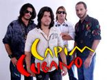 CAPIM CUBANO